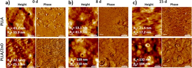 AFM height and phase images showing surface features of neat PLLA and PLLA/ZnO nanocomposite. (a) The initially non-degraded matrices (0 d) and (b, c) 8–15 days degraded surfaces are shown; roughness values are highlighted. Scale bar: 2 μm.